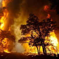 Resolution of Bastrop Fire Claims